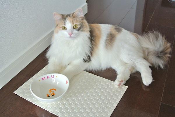 マウちゃん 猫用食器全身